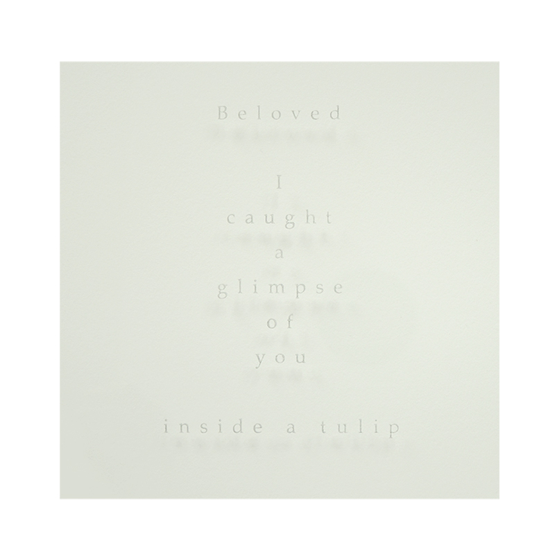 Beloved, Sandblasted text - Beloved I caught a glimpse of you inside a tulip. Sandblasted glass, paper, 24ct gold leaf, Ink. Frame size - 767mm wide x 465mm high x 50mm deep. 2014