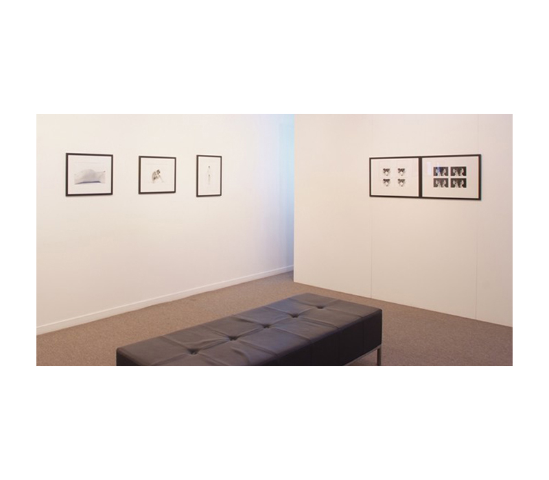 Somewhere In-between (Installation photo), Photospace Gallery, 2011